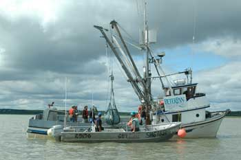 catcher/tender fishing boat in Bristol Bay